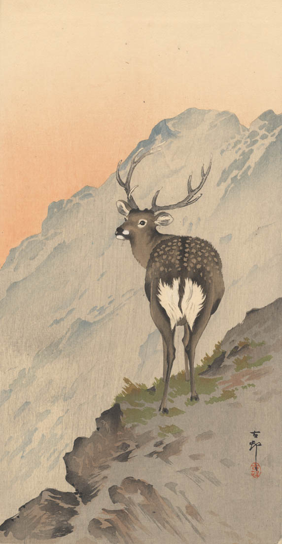 KOSON  (1877-1945). A Deer. (Sold)