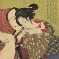 images/15_icone_catagories/Icone_libri/shunga_books.jpg